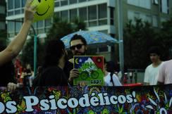 Ala Psicodélica RJ 2017 15